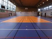 Спортивный линолеум LG REXCOURT SOLID -6, 5мм. Склад Москва. Опт,  мелки