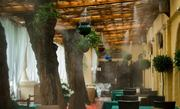 Система тумана для охлаждения террас,  беседок,  навесов,  кафе