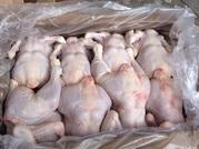 Куриная тушка оптом по цене производителя.